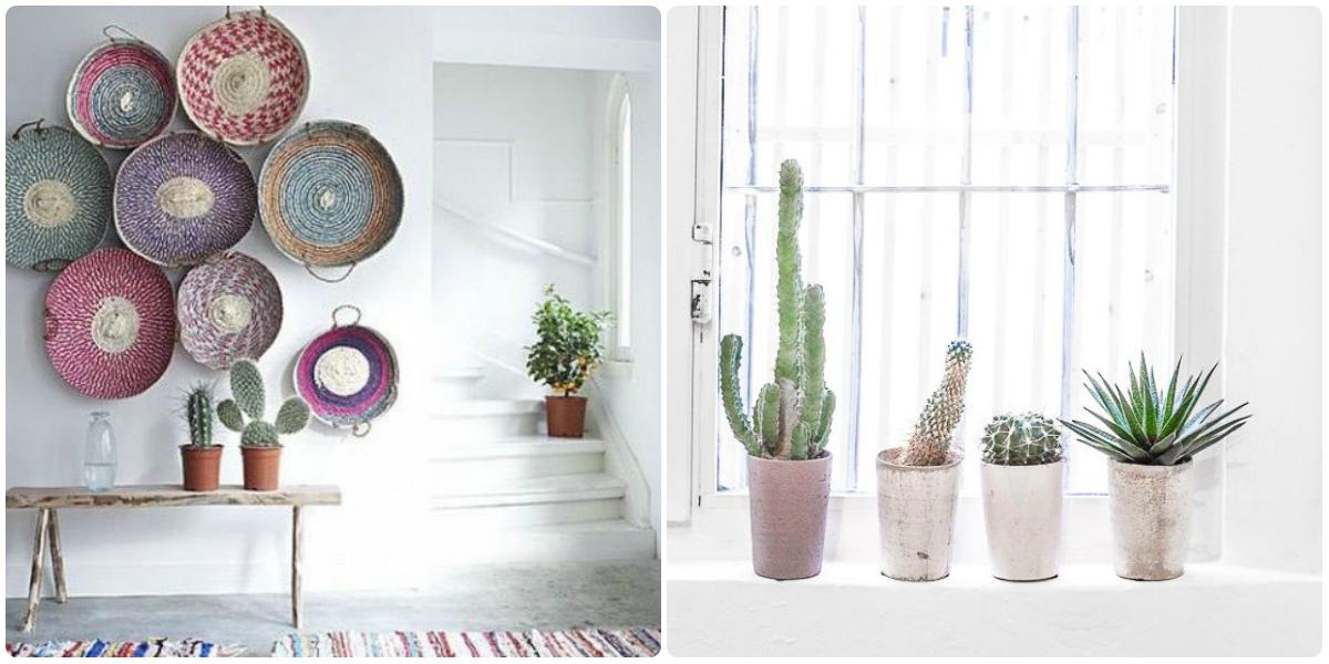 Cactus Quartier CréatiV plante tendance