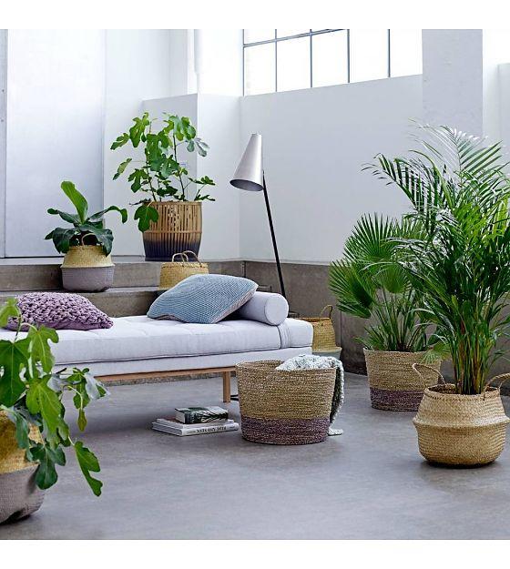 ambiance_vegetale_tendance_green_quartier_creativ'