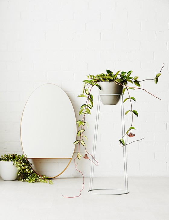 ambiance_vegetale_tendance_green_quartier_creativ